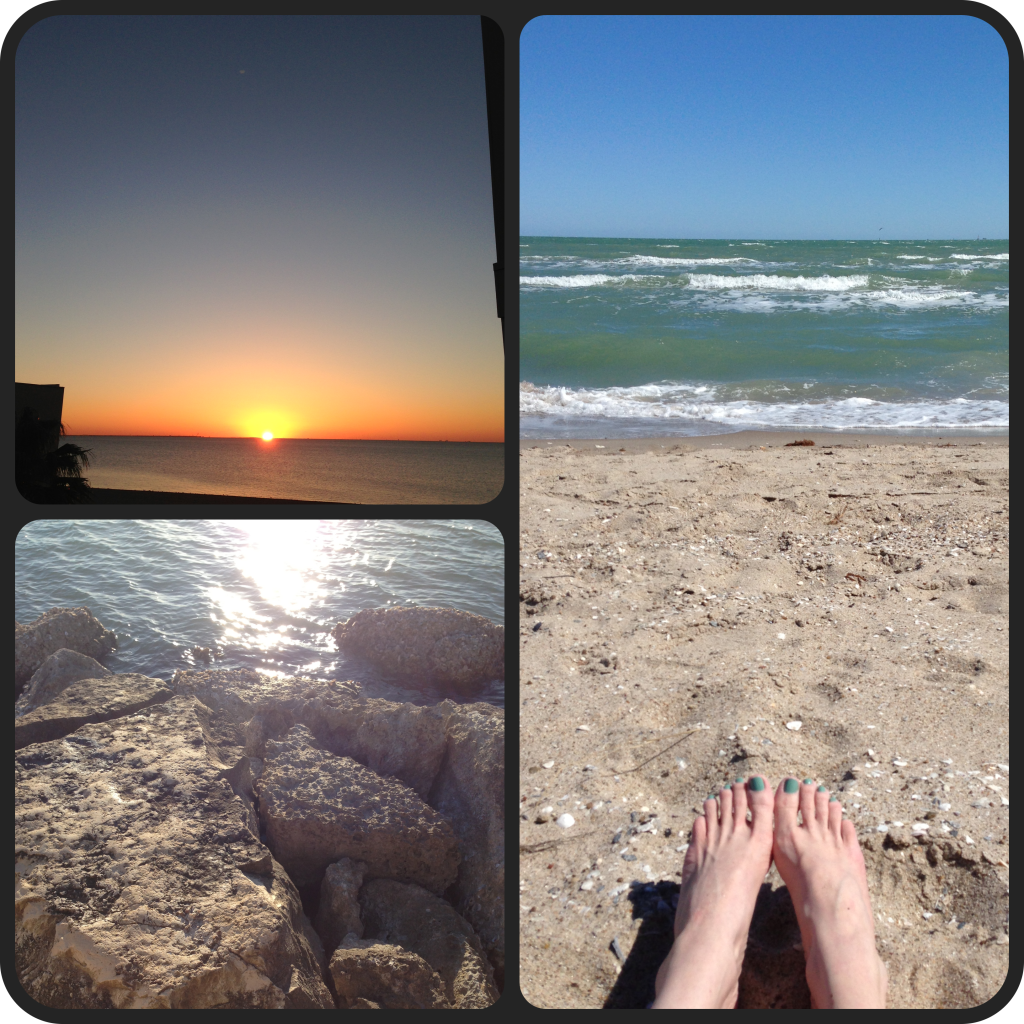 Top left: sunrise from my balcony. Bottom left: from the rocky pier. Right: catching some sun.